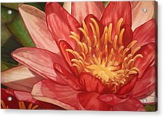 Glorious Acrylic Print by Melissa Tobia