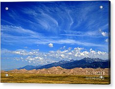 Glorious Morning Acrylic Print by Paula Guttilla