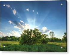 Acrylic Print featuring the photograph Glorious Sky - A by Anthony Rego