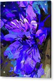Glory Blue Acrylic Print