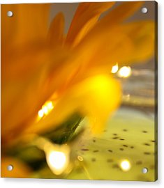 Acrylic Print featuring the photograph Glow by Bobby Villapando