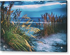 Acrylic Print featuring the photograph Glowing Dunes Before Sunrise On The Outer Banks by Dan Carmichael