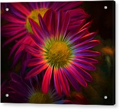 Glowing Eye Of Flower Acrylic Print