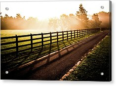 Acrylic Print featuring the photograph Glowing Fog At Sunrise by Shelby Young