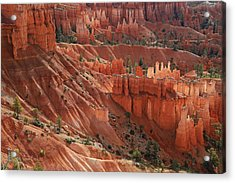 Acrylic Print featuring the photograph Glowing Hoodoos by Donna Kennedy