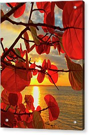 Glowing Red Acrylic Print