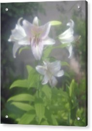 Glowing Spring Acrylic Print