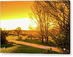 Glowing Sunset Acrylic Print