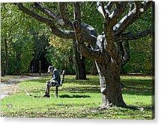 Gnarly Tree Solitude Acrylic Print
