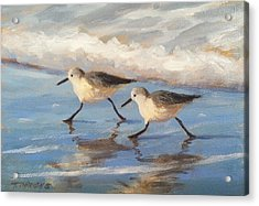 Go Sandpipers Acrylic Print by Tina Obrien
