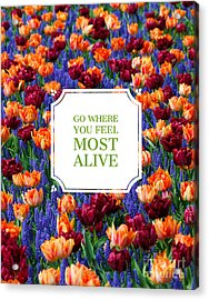 Go Where You Feel Most Alive Poster Acrylic Print by Edward Fielding
