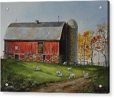 Goat Farm Acrylic Print