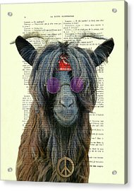 Goat In Hippie Clothes With Purple Glasses And Peace Necklace Acrylic Print