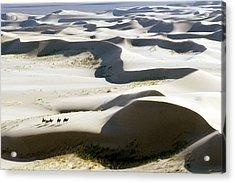 Gobi Desert Acrylic Print by Ria Novosti