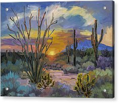 God's Day - Sonoran Desert Acrylic Print by Diane McClary
