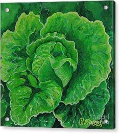 God's Kitchen Series No 5 Lettuce Acrylic Print
