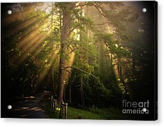 God's Light 2 Acrylic Print