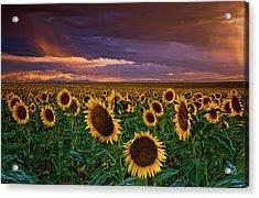 God's Painted Sky Acrylic Print by John De Bord
