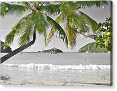 Acrylic Print featuring the photograph Going Green To Save Paradise by Frozen in Time Fine Art Photography
