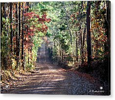 Acrylic Print featuring the photograph Going Home by Betty Northcutt