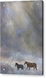 Going To Barn Acrylic Print by Ron Jones