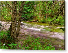 Going To The River Acrylic Print