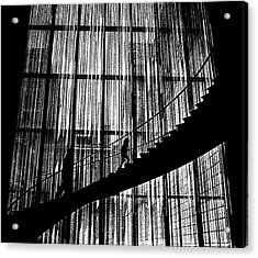 Going Up Acrylic Print by Dennis Sullivan