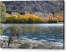 Gold Across The Water Acrylic Print