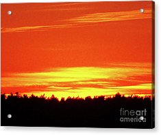 Gold And Red Sunset Silhouette Acrylic Print