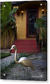Gold Flamingo Acrylic Print by Jeanne  Woods