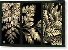 Gold Leaf Triptych Acrylic Print