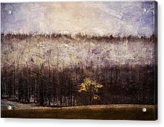 Gold Leafed Tree In Snow Acrylic Print