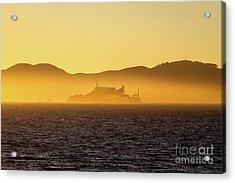 Golden Alcatraz Acrylic Print by JR Photography