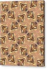 Golden Arrowheads Acrylic Print