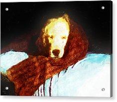 Golden Aura Acrylic Print by Rora