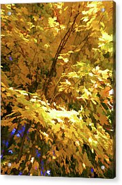 Golden Autumn Scenery Acrylic Print by Lanjee Chee