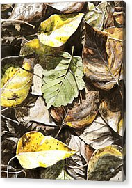 Acrylic Print featuring the painting Golden Autumn - Talkeetna Leaves by Karen Whitworth