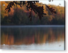 Acrylic Print featuring the photograph Golden Autumn by Vadim Levin