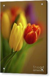 Golden Bouquet Acrylic Print by Mike Reid