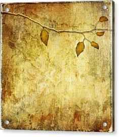 Golden Branch Of Hope  Acrylic Print