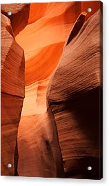 Golden Canyon Acrylic Print by Eric Foltz