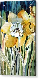 Golden Daffodil Acrylic Print by Mindy Newman