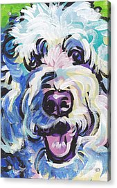 Golden Doodly Dee Acrylic Print by Lea S