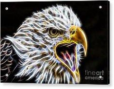 Golden Eagle Collection Acrylic Print