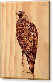 Acrylic Print featuring the pyrography Golden Eagle by Ron Haist