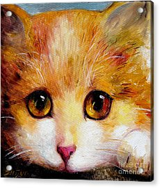 Golden Eye Acrylic Print by Shijun Munns