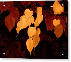 Golden Fall Leaves Acrylic Print