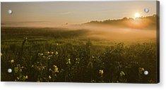 Golden Fog Sunrise At The Refuge Acrylic Print