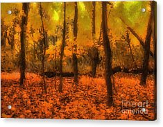 Golden Forest Acrylic Print by Jeff Breiman