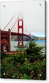 Golden Gate Acrylic Print by Amy Dooley